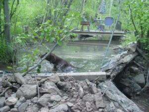 ручей для гидростанции