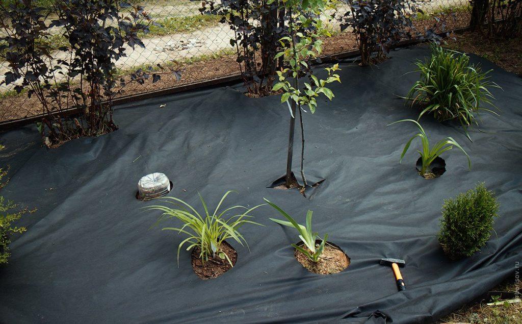Геотекстиль на садовом участке